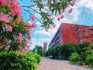 珠海城市职业技术学院(电大中职)